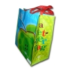 RPET Bag-Exlarge-Click to View Product Details
