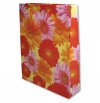 Paper Gift Bag-Click to View Product Details