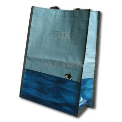 Heavy Duty Reusable Bag-Click to View Full Size